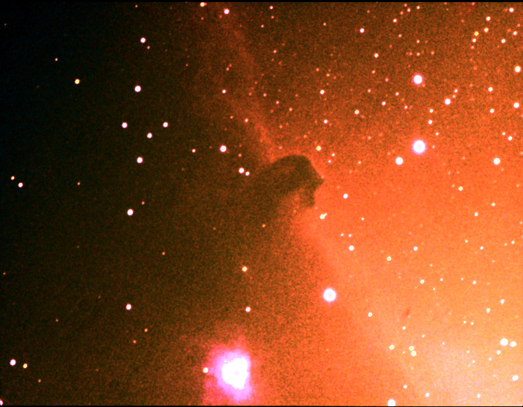 Darren Swindells image of the Horsehead Nebula